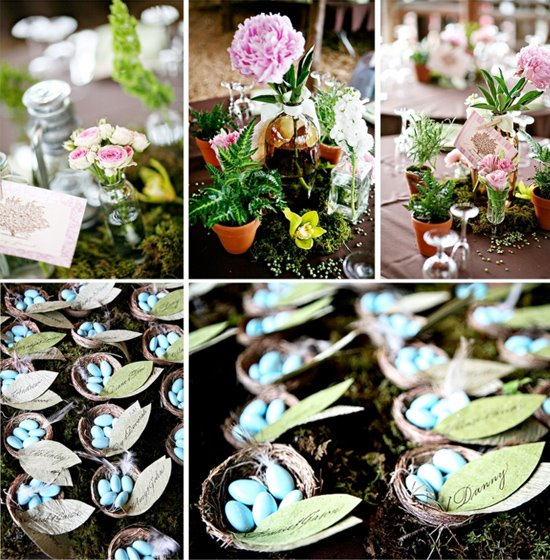 birds nest seating cards