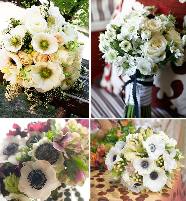 Addicted To Anemones, Great For Your Wedding