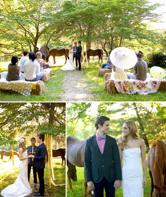 horses at ceremony