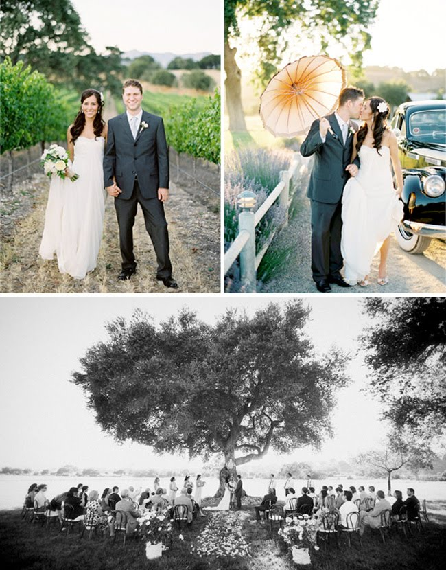 vineyard wedding jose villa