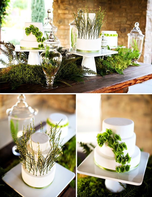 eco forest inspired tablescape