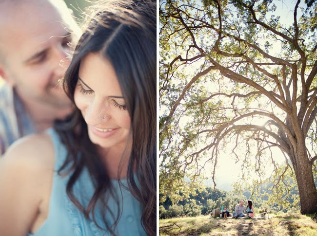 anniversary photos with giant tree