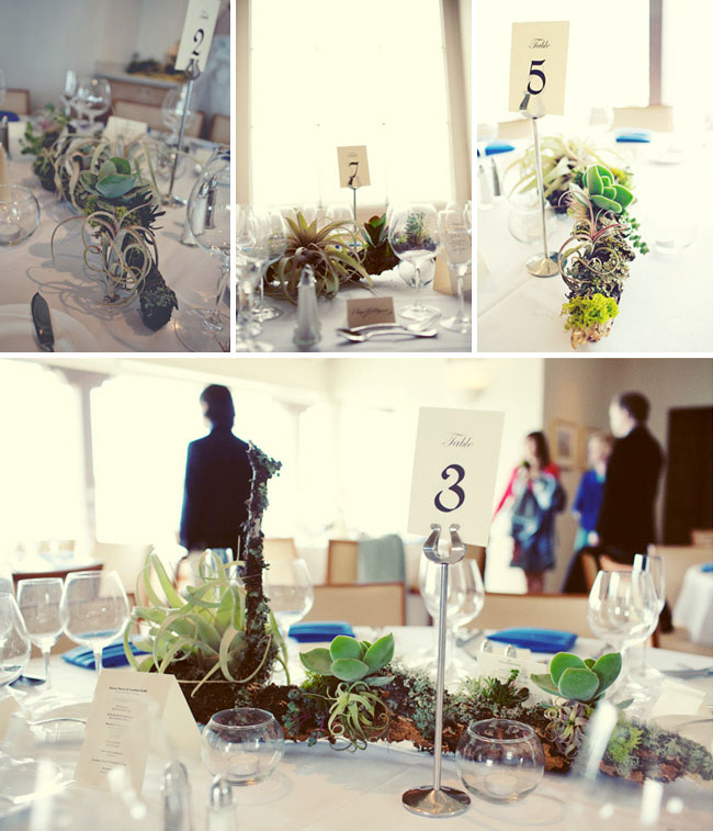 succulents wedding decoration reception