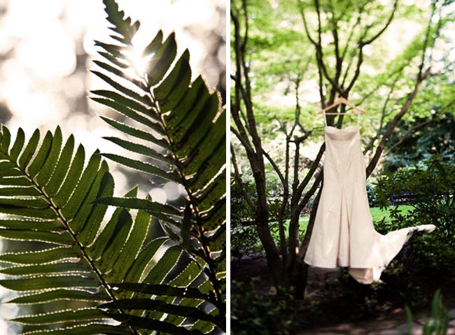 wedding dress hung in tree