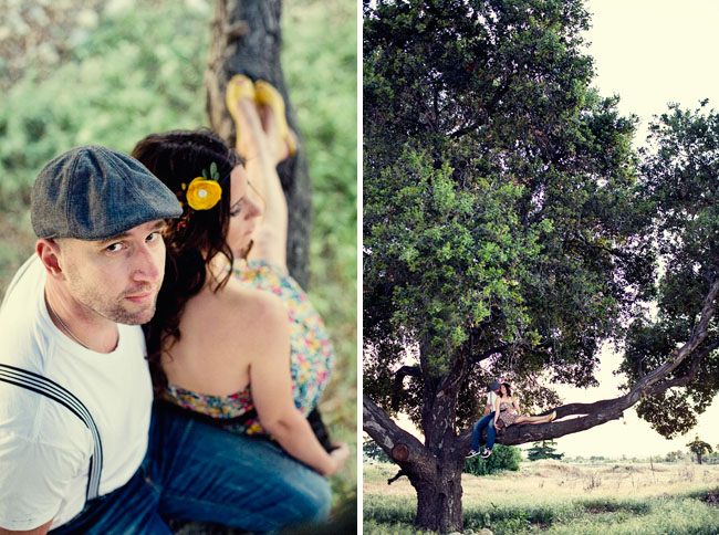 engagement photos in a tree