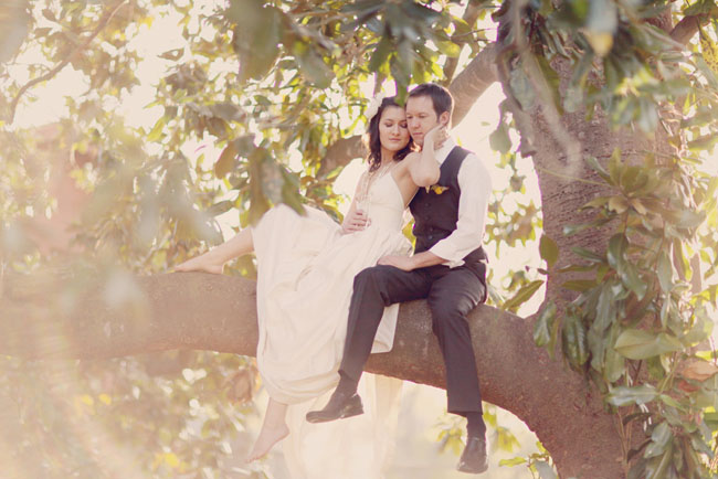 wedding portraits in a tree