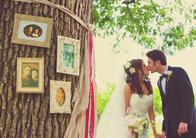 wedding frames on tree