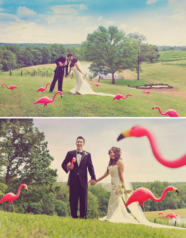 wedding flamingos