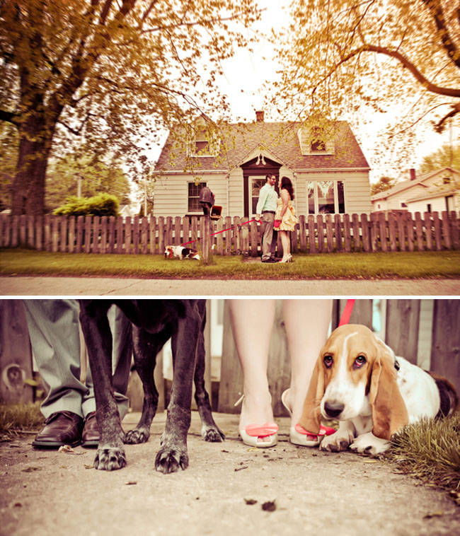 engagement photos at home dogs