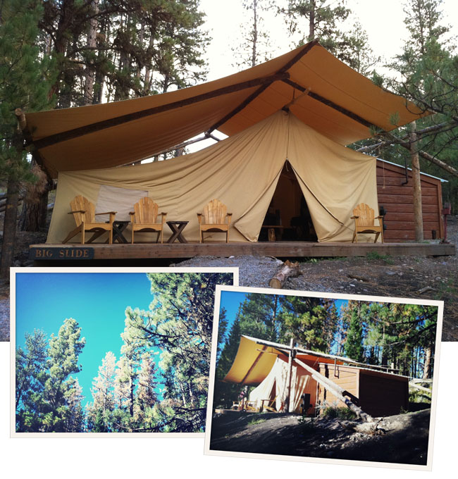 glamping paws up tent