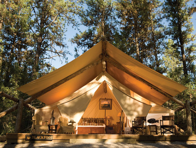 glamping tent paws up montana