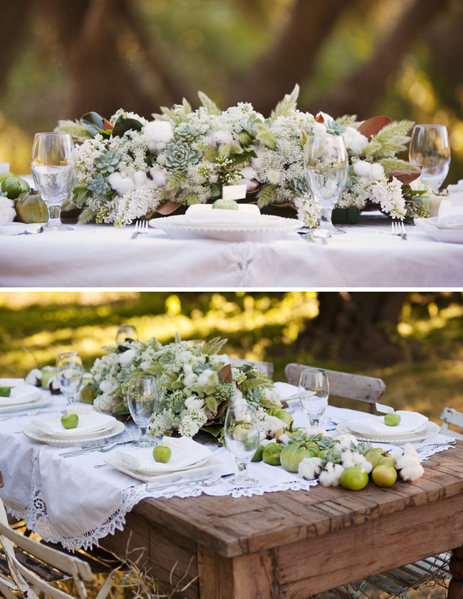 raw cotton tomatoes table design