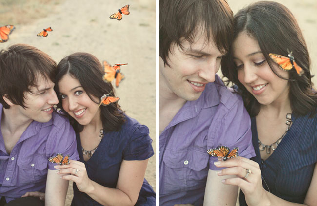 butterflies couple in love