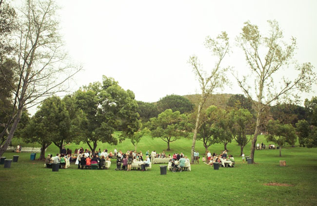 picnic wedding reception