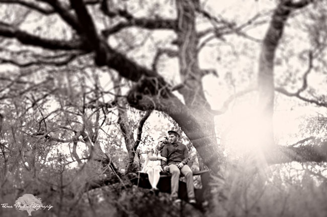 couple in a tree black and white photo