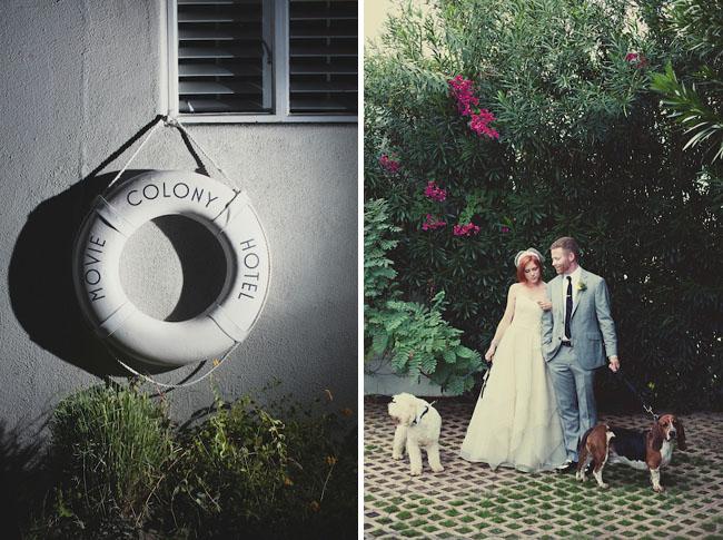movie colony hotel wedding dogs