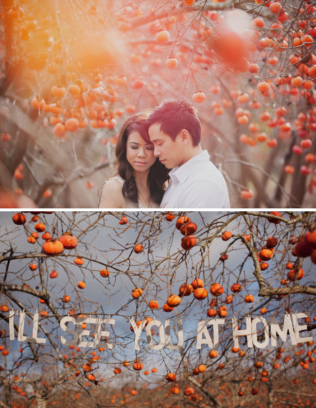 pomegranate orchard engagement photos