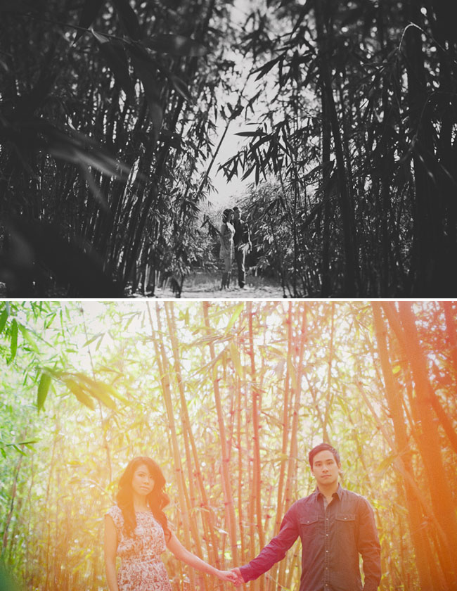 engagement photos in bamboo