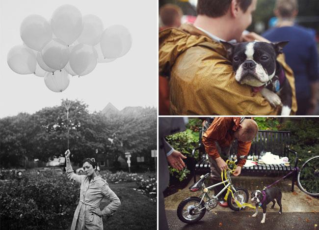puppy at wedding