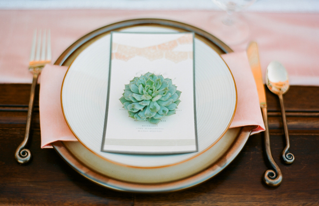 succulent on plate