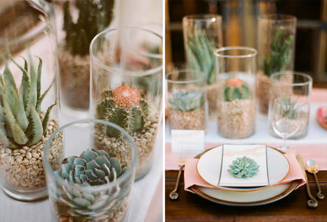 succulent table top designs