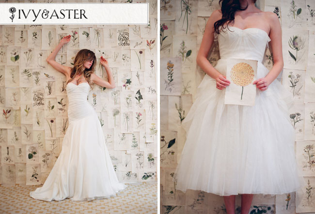 ivy and aster wedding dresses