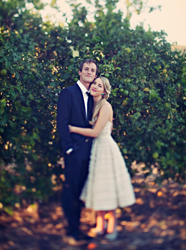 wedding in an orange grove