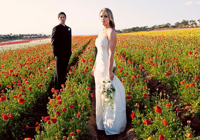 bride and groom in ranunculus fields