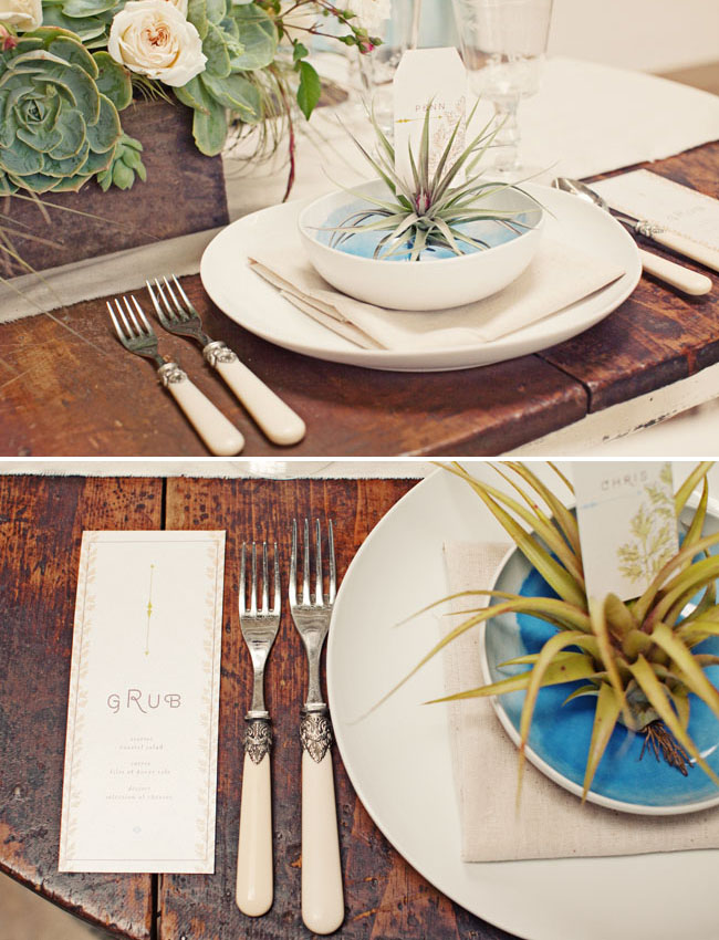 airplant wedding favor