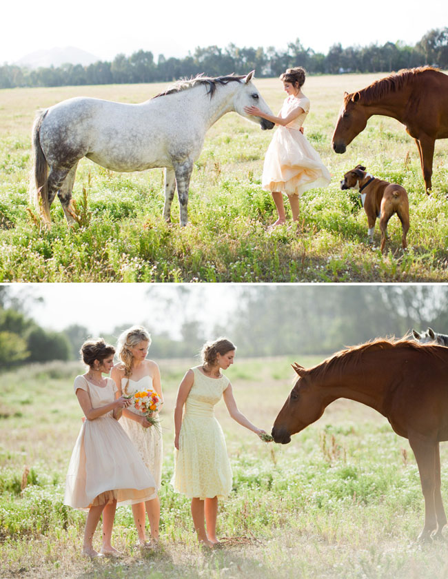 bridesmaids with horse