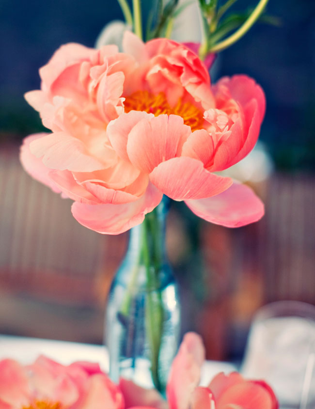 peony wedding flowers table