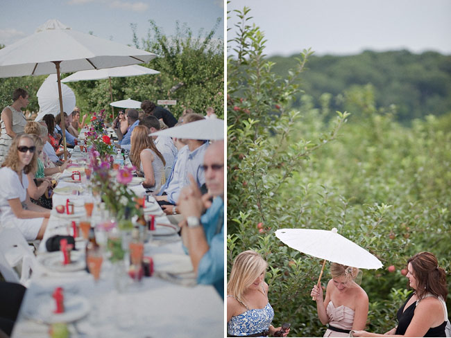 tree grove wedding reception