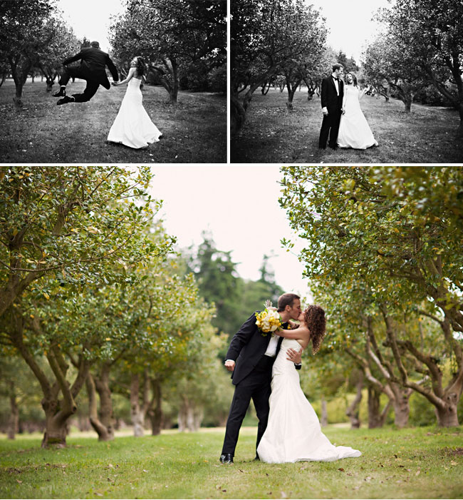 bride and groom in orchard kissing
