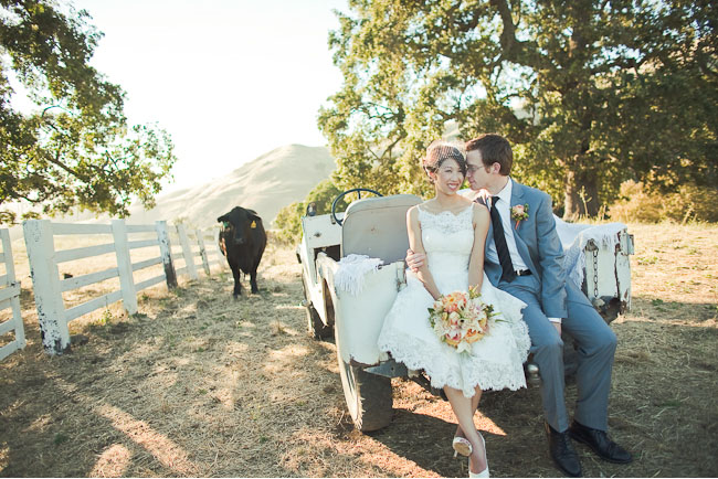 bride and groom on tractor with cow