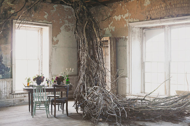 whimsical tree branches