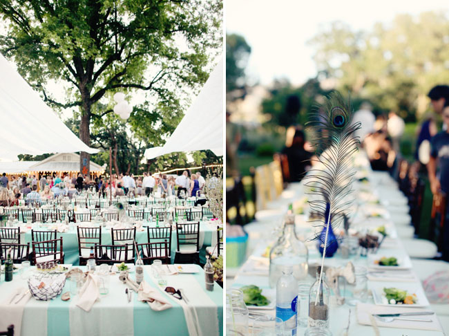 peacock feather reception