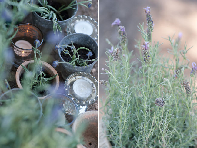 lavender ceremony decor