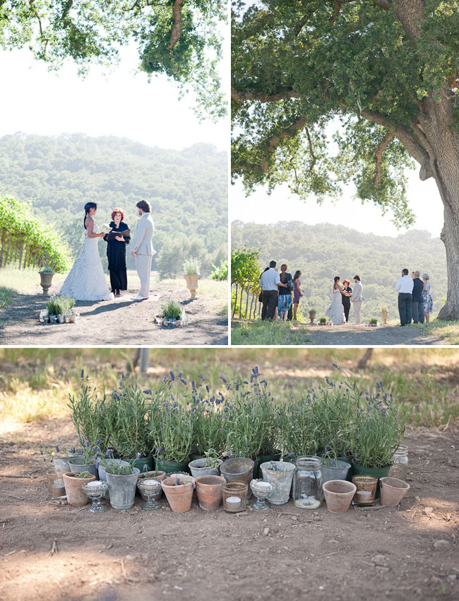 lavender ceremony