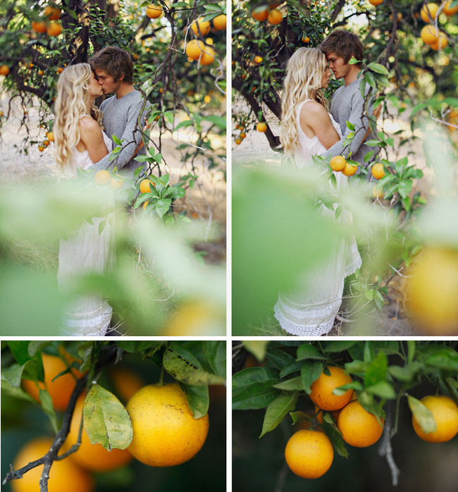 orange grove engagement