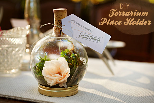 DIY-terrarium-placeholder-01