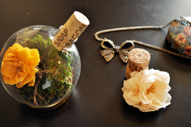 DIY-terrarium-placeholder-05