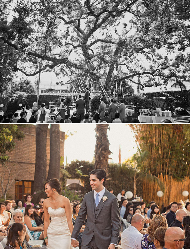 ribbon tree wedding