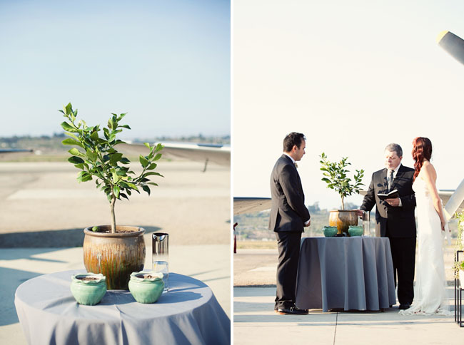 planting a tree at wedding ceremony