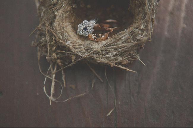 birds nest with wedding rings