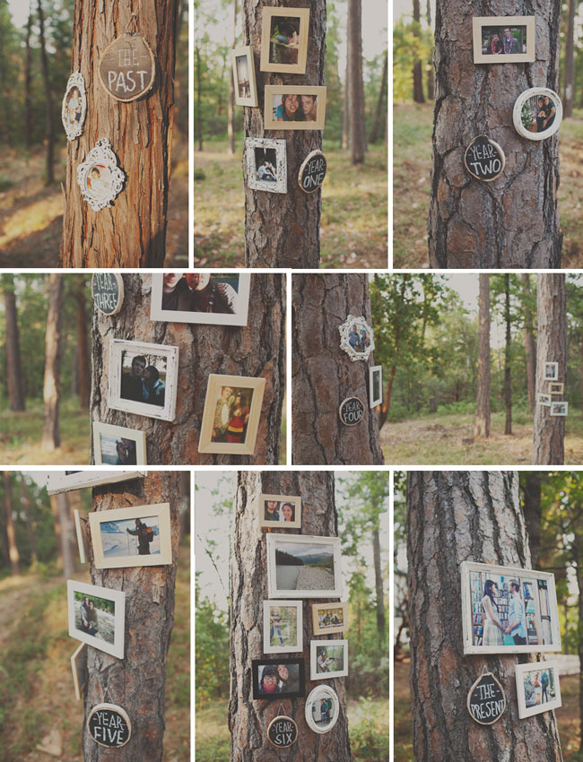 past photo frames on tree