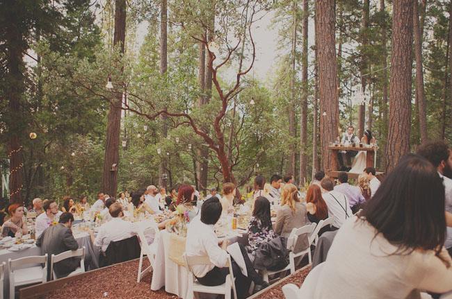 wooded wedding reception