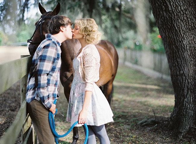 engagement, horse