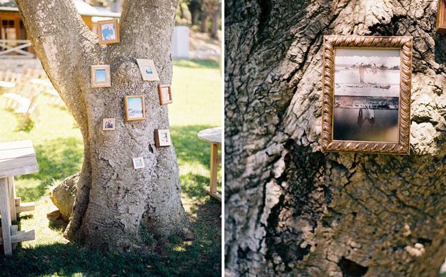frames in tree
