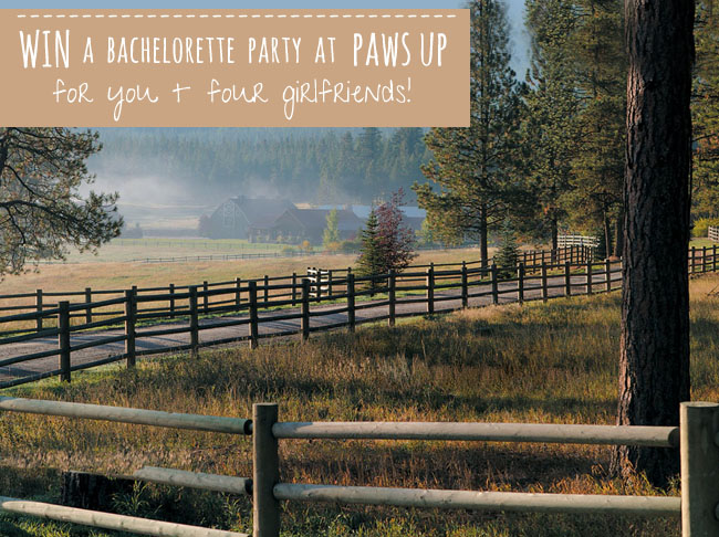 bachelorette-party-paws-up-intro