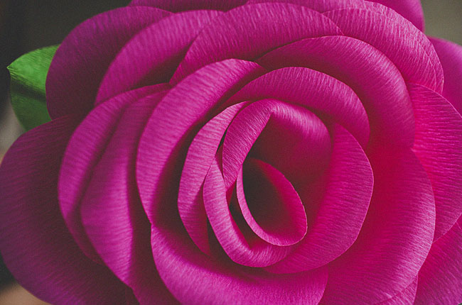 diy-giant-paper-rose-17